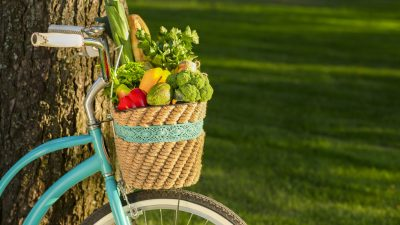 Rental bike with Picnic